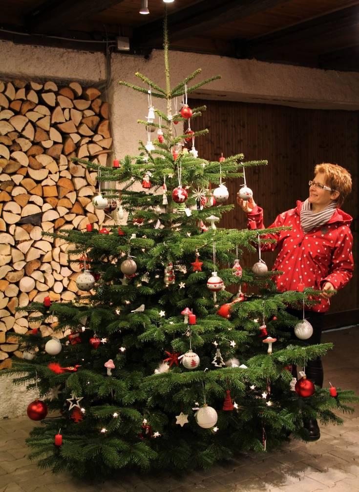 ausstellungsb ume machen lust auf weihnachten. Black Bedroom Furniture Sets. Home Design Ideas